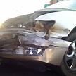 Crash 'almost kills' Geldof