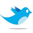 Ashton quits Twitter