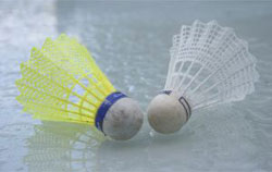 South Korea's badminton ban is reduced after Olympics scandal