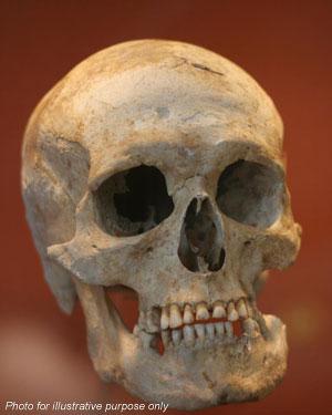 Skeleton found is confirmed as King Richard III