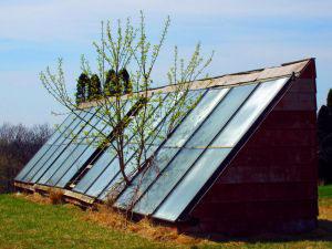 Ways Solar Power Energy Systems Help the Environment