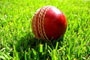 Apps to Check the Score of Both Online & Offline Cricket Games