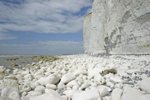 Section of White Cliffs of Dover collapses