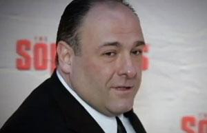 The Sopranos' James Gandolfini has died