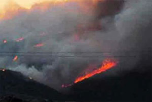 Arizona wild fire kills 19 firefighters