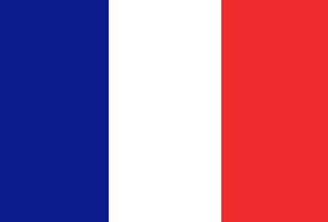 France honours Mali Troops on Bastille Day