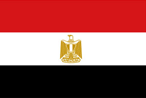 "Egypt: Army allows ""peaceful protests"" to Morsi's supporters"