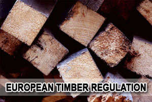 Say no to illegal timber production: threat to UK bio diversity