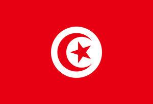 Tunisian politician Mohamed Brahmi assassinated