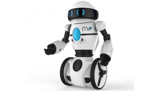 Social Care Robot