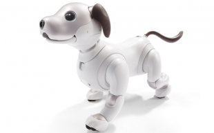 New Sony Aibo to Create Emotional Bond