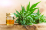 Does CBD Oil work as a Pain Reliever