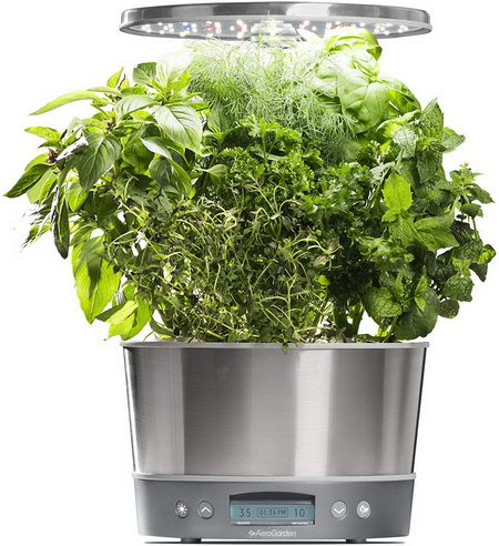 Grow Fresh Greens Indoors with Smart Gardens
