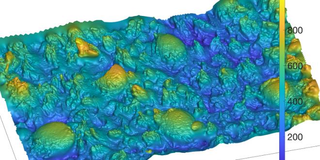 Leeds University Print 3D Tongue Surface