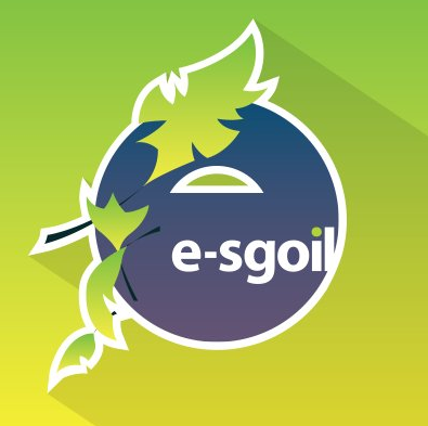 e-Sgoil Online Learning Success