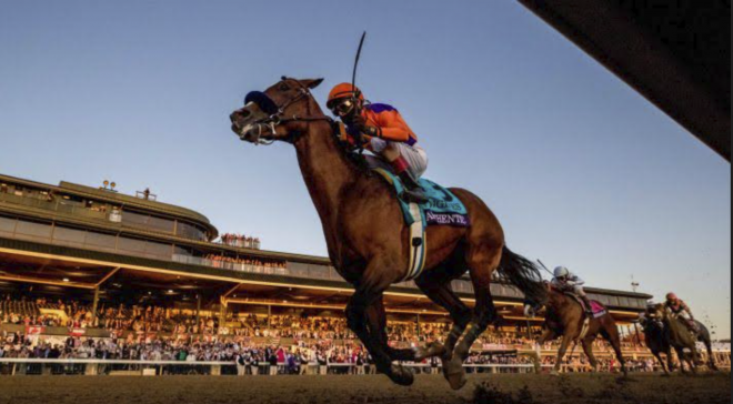 Betting Tips For The Upcoming Breeders Cup